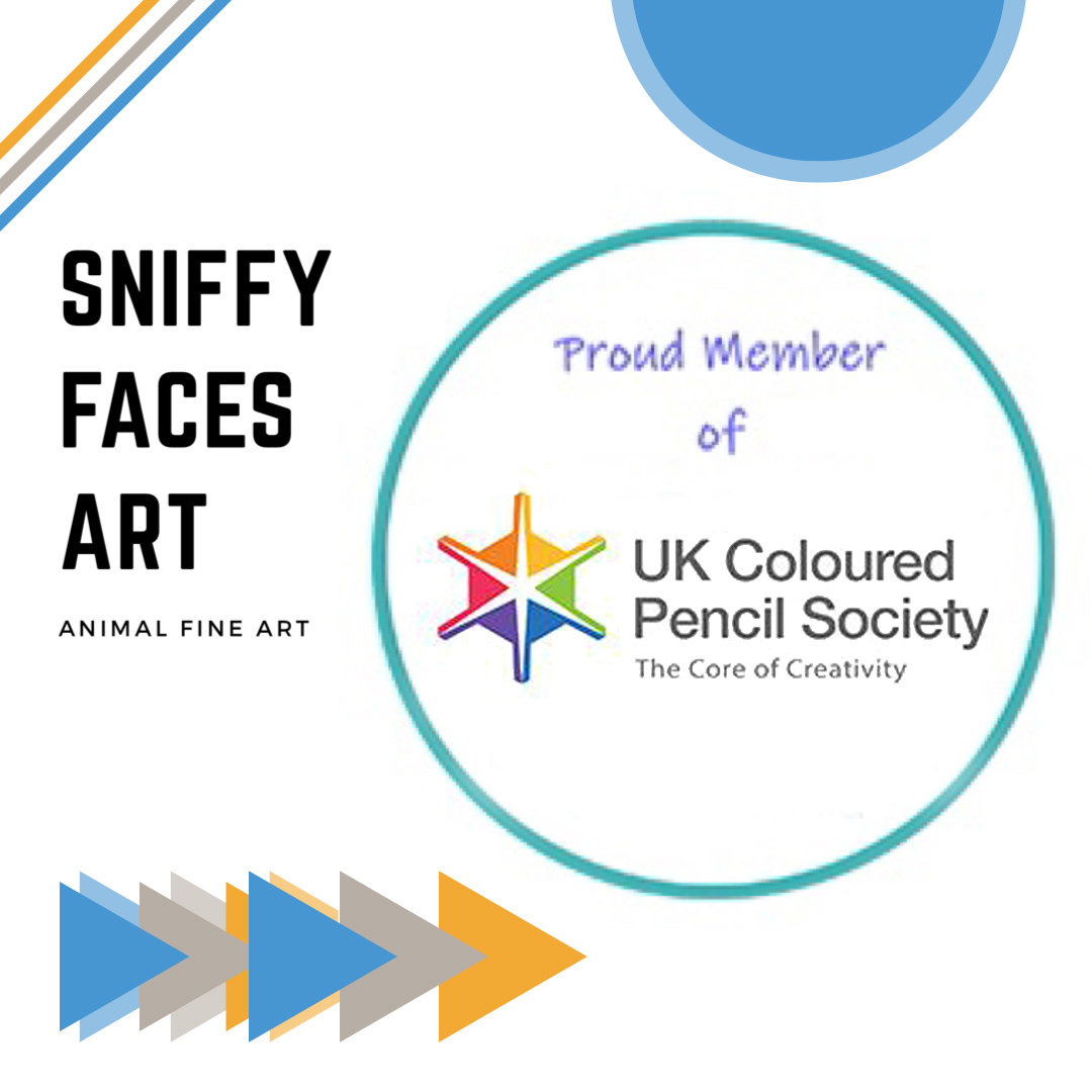 Homepage Sniffy Faces Art